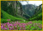 Valley of Flowers, Himalayas